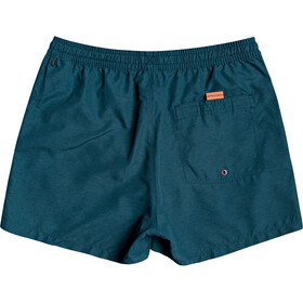 Quiksilver Everyday Volley 15 Shorts Men, majolica blue heather